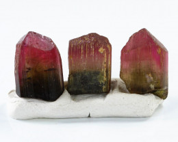 16.02ct Watermelon Tourmaline from Madagascar - NR Auctions