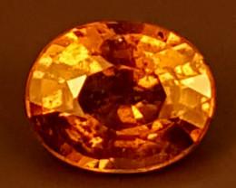 1.15Crt Rare Color Change Garnet  Best Grade Gemstones JI16