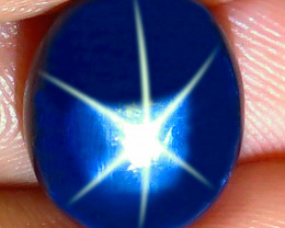 11.14 Carat Southeast Asian Blue Star Sapphire - Gorgeous