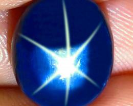 11.14 Carat Southeast Asian Blue Star Sapphire - Gorgeous