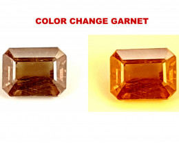 1.25CT COLOR CHANGE GARNET  BEST QUALITY GEMSTONE IGC67