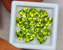 10.77Ct Green Peridot Trillion Cut Lot LZ2032