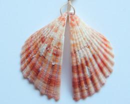 Beautiful Shell ,Handmade Gemstone ,Shell Earrings ,Lucky Stone B724