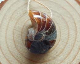 Ammonite Pendant, Fossil Pendant,Shell Pendant, Natural Pendant B729