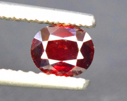 1.30  Carats Rare Blood Red Color Natural Oval Cut Tantalite Gemstone