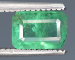 0.60 Carats Natural Emerald Gemstone