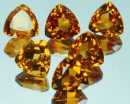 9.30 Cts Natural Golden Yellow Citrine Trillion Parcel
