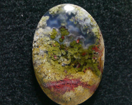 32.25 CT UNTREATED Beautiful Indonesian Moss Agate Picture