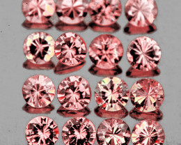 2.30 mm Round 16 pcs Orangish Pink Sapphire [VVS]