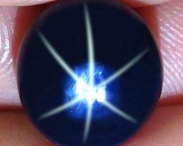 10.78 Carat Southeast Asian Blue Star Sapphire - Gorgeous