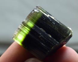 78  Carats Bi Color Tourmaline Crystal