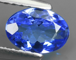 ~HUGE SPARKLE TOP BLUE NATURAL TANZANIA TANZANITE OVAL EXCELLENT NR!!!
