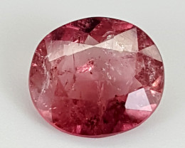 3.75Crt Rubellite  Best Grade Gemstones JI21
