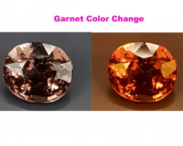 1.50Crt Garnet Color Change  Best Grade Gemstones JI21