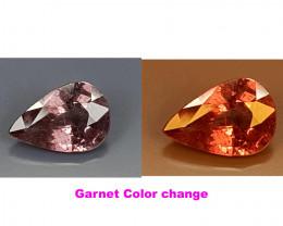 1.55Crt Garnet Color change  Best Grade Gemstones JI22