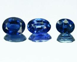 Marvelous 1.84Ct Natural Royal Blue Sapphire Parcel