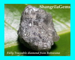 16.4mm 14.54ct Conflict free Natural silver grey rough diamond
