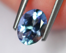 1.00cts Natural Violet Blue D Block Tanzanite / 2366