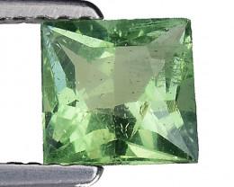 1.01 Ct Green Apatite Good Quality Gemstone. AP 08