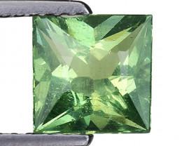 1.36 Ct Green Apatite Good Quality Gemstone. AP 14