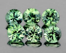 3.30 mm Round 6 pcs Green Sapphire [VVS]