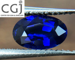 Certified - 0.55ct - Royal Blue Sapphire