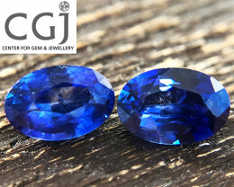 Certified - 0.95ct - Royal Blue Sapphire Pair