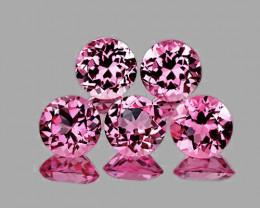 4.00 mm Round 5 pcs 1.37cts Pink Tourmaline [VVS]
