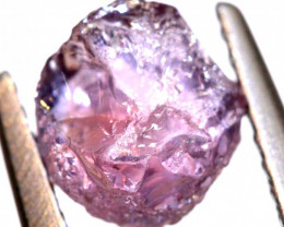 1.84 CTS  MONTANA  SAPPHIRE ROUGH CRYSTAL UNTREATED  RG-3524