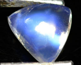 1.77Ct Natural Royal Blue Moon Stone Trillion Cab 8.50mm