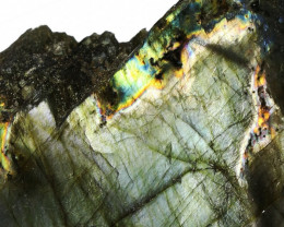"""742.00 CTS  LABRADORITE -PART POLISHED""""""""-ELECTRIC MIDNIGHT [F7790"""