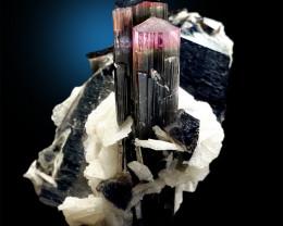 Tourmaline Crystals with Cleavlandite & Smoky Quartz Specimen from Staknala