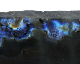 "584.35 CTS  LABRADORITE -PART POLISHED ""ELECTRIC MIDNIGHT [F7815]"