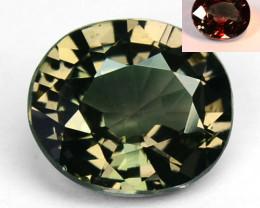 ~AMAZING~ 1.00Cts Natural Color Change Garnet Oval Cut Tanzania