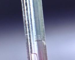 3.00 CT Natural - Unheated  Bi Tourmaline Crystal
