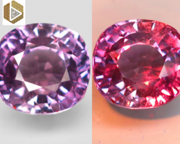 NR! Certified Unheated 3.25 CT Color-Change Purple-Lavender Sapphire $4,200