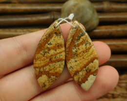 New style picture jasper earring pendant necklace set (G0079)