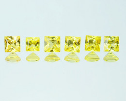 Canary Yellow 0.64Ct Natural Square Princess Sapphire 2.50mm Parcel