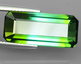 6.95 Cts Attractive Natural Bi-Color Green Tourmaline Gem Octogon Mozambiq!