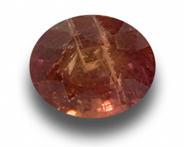2.31 Carats | Natural Unheated Padparadscha|Loose Gemstone| Sri Lanka - New