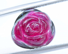 NR - 5.75 cts Watermelon Tourmaline Carved Slice
