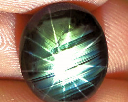 11.07 Carat 12 Ray Thailand Star Sapphire - Gorgeous