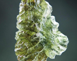 Moldavite  - Hedgehog from Besednice with CERTIFICATE