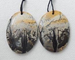 Unique Beautiful Chohua Jasper,Natural Chohua Jasper Heart Shape Earrings C