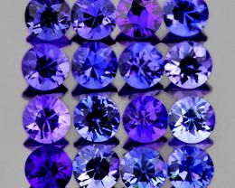 2.40 mm Round Machine Cut 16pcs Unheated Violet-Blue Sapphire [VVS]