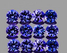 2.50 mm Round 12 pcs Unheated Violet-Blue Sapphire [VVS]