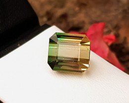9.65 Ct Natural Bi Color Transparent Tourmaline Ravishing Gemstone
