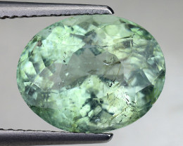 6.05 CT Certified Ct Paraiba Tourmaline Attractive Higher Color ~ Mozambiqu