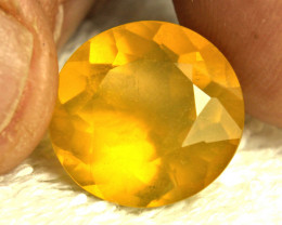 11.24 Carat Honey Gold Mexican Fire Opal - Gorgeous