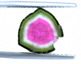 8.65 cts Watermelon Tourmaline Slice